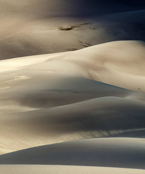 Photograph - Great Sand Dunes National Park V by Greg Reed