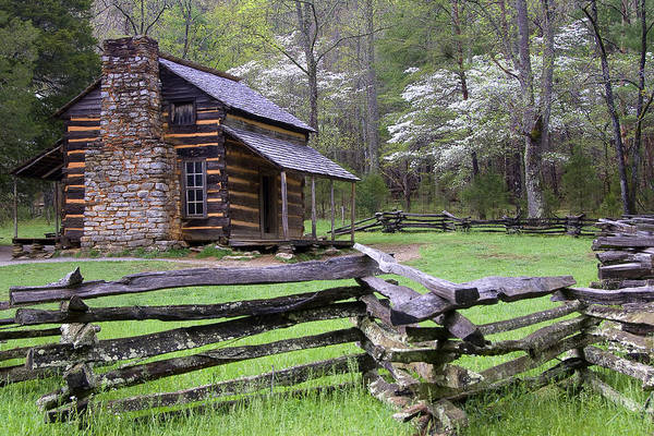 John Oliver Cabin Photograph - Great Smoky Mountains - Cottage Bloom by Susan Stanton