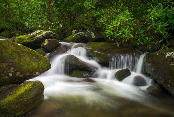 Wall Art - Photograph - Great Smoky Mountains Gatlinburg Tn Roaring Fork Waterfall Nature by Dave Allen