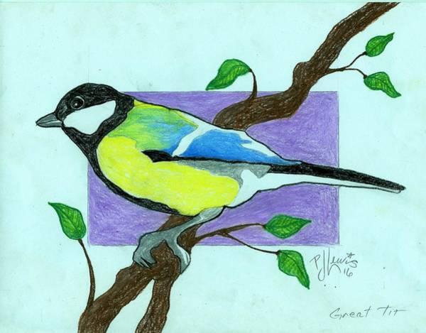 Pastel Pencil Drawing - Great Tit Bird by PJ Lewis