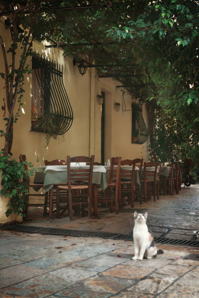 Restaurants Photograph - Greek Streets - Corfu by Cambion Art