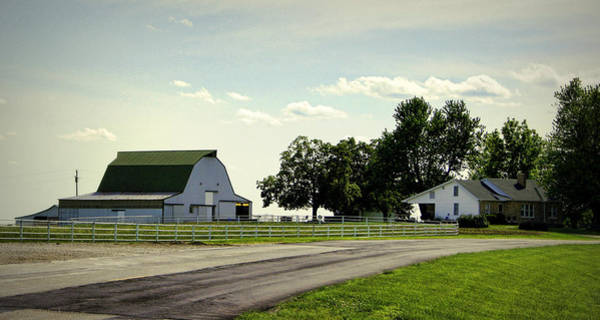 Photograph - Green And White Farm by Cricket Hackmann
