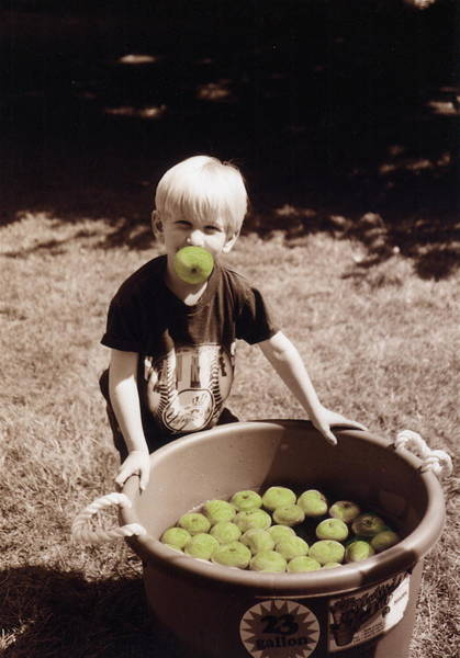 Bobbing For Apples Wall Art - Painting - Green Apples by Cindy Roesinger