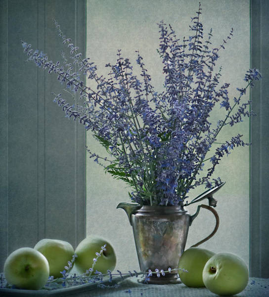 Photograph - Green Apples In The Window by Maggie Terlecki