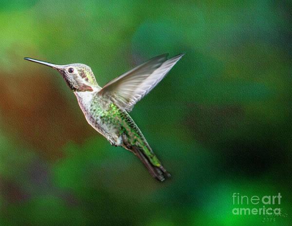 Photograph - Green Beauty by David Millenheft