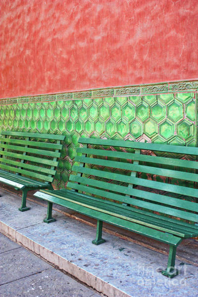 Photograph - Green Benches Perspective by Carol Groenen