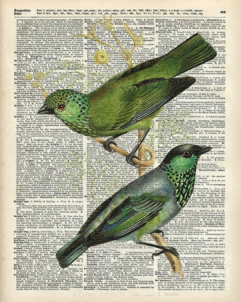 Wall Art - Digital Art - Green Canary Birds Couple Over Vintage Dictionary Book Page by Anna W