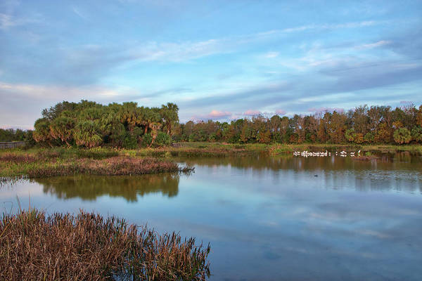 Photograph - Green Cay Nature Center And Wetlands by Juergen Roth