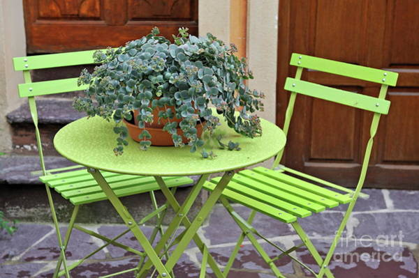 Wall Art - Photograph - Green Chairs And Table With Plant In Pot by Sami Sarkis