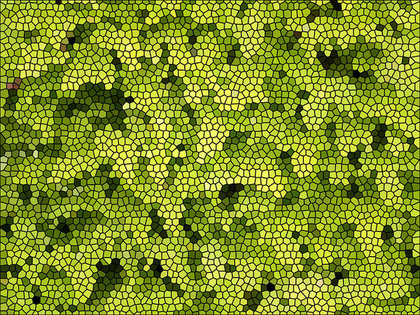 Digital Art - Green Curtain by James Granberry