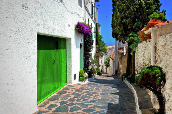 Photograph - Green Door Passage  by Harry Spitz