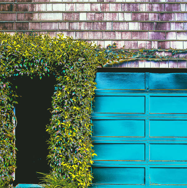 Photograph - Green Entrance by Lee Harland
