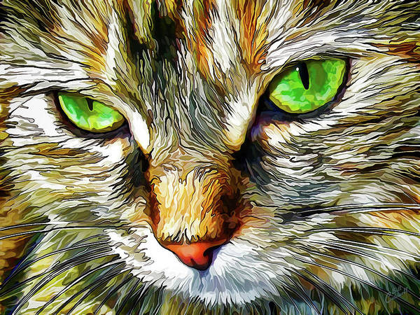 Manipulated Digital Art - Zen Cat by ABeautifulSky Photography by Bill Caldwell