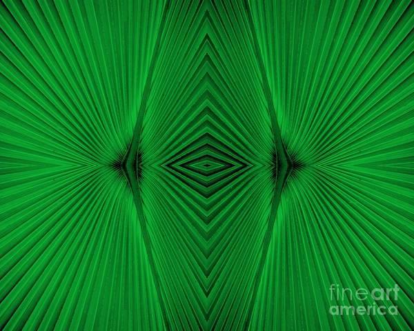 Photograph - Green Fan Abstract by Carol Groenen