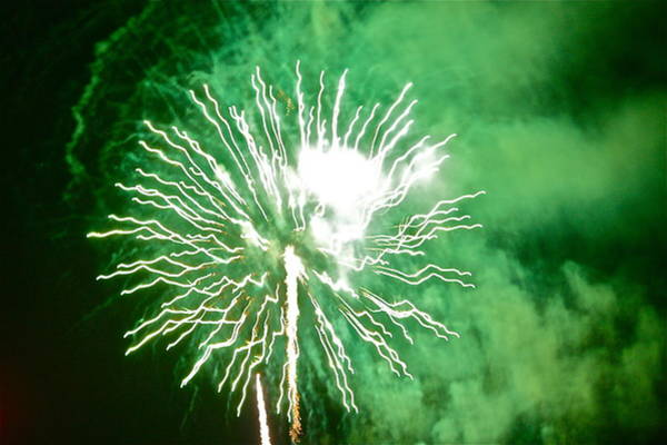 Photograph - Green Fireworks by Diana Hatcher