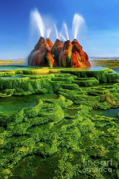 Geothermal Photograph - Green Fly Geyser by Inge Johnsson