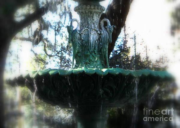 Photograph - Green Fountain by Carol Groenen