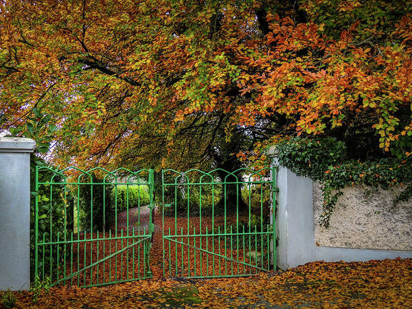 Photograph - Green Gate To Autumn Paradise by James Truett