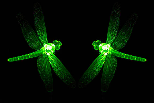 Photograph - Green Glass Ornament Dragonflys Glowing At Night by John Williams