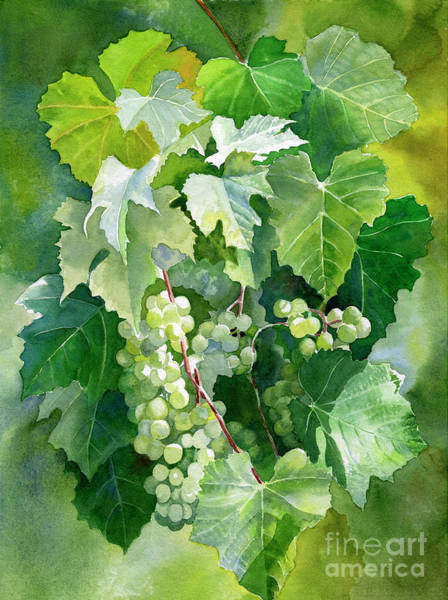 Dark Green Painting - Green Grapes And Leaves by Sharon Freeman