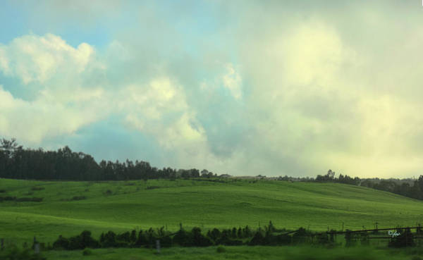 Photograph - Green Green Hills Of Maui by Paulette B Wright