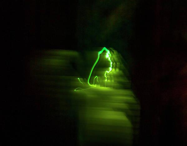 Otp Photograph - Green Haze by Marshall Barth