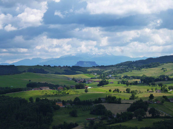Photograph - Green Hills by Laura Greco