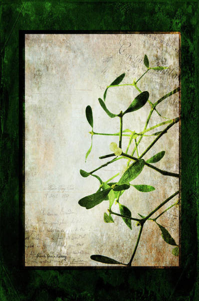 Photograph - Green Illusion by Randi Grace Nilsberg
