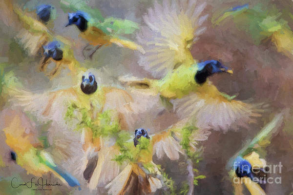 Digital Art - Green Jay Collage by Carol Fox Henrichs