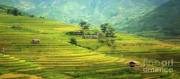 Steep Photograph - Green Land by Thomas Jones