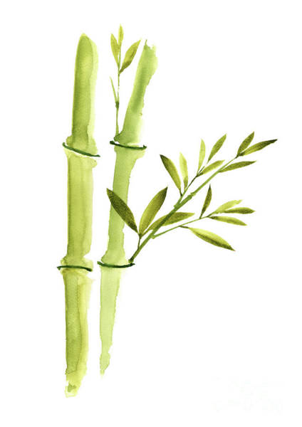Bamboo Painting - Bamboo Leaves, Green Living Room Wall Decor, Watercolor Painting  by Joanna Szmerdt