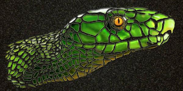 East Africa Digital Art - Green Mamba Snake by Michael Cleere