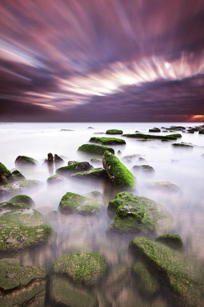 Wall Art - Photograph - Green Motion by Jorge Maia