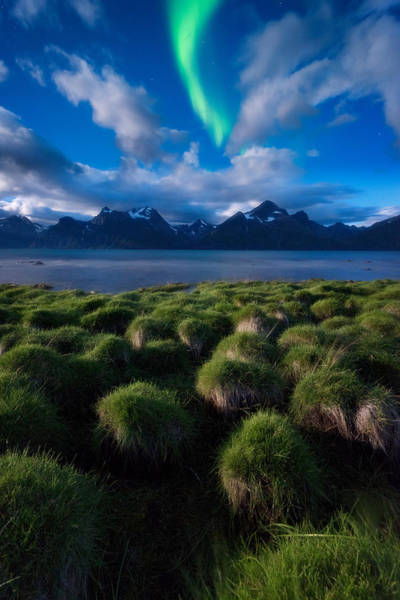 Northern Photograph - Green Night by Tor-Ivar Naess