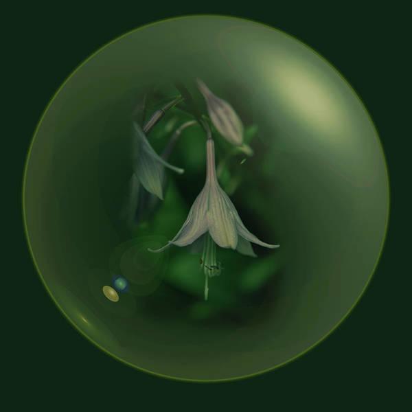 Digital Art - Green Orb Flower by Richard Ricci