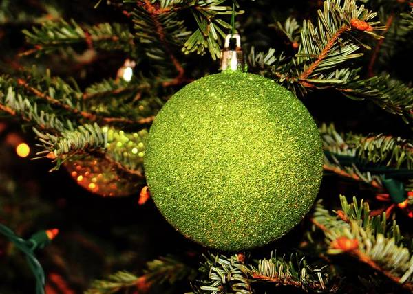 Photograph - Green Ornament  by Cynthia Guinn