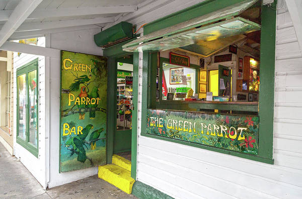 Wall Art - Photograph - Green Parrot Bar Oh The Tales And Stories by Betsy Knapp
