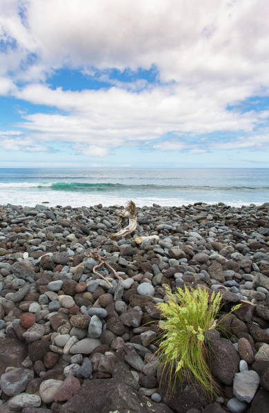 Photograph - Green Point by Edgar Laureano