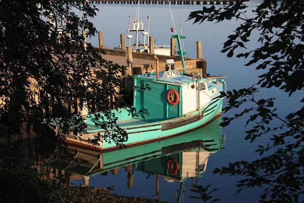 Photograph - Green Reflection 2 by David Matthews