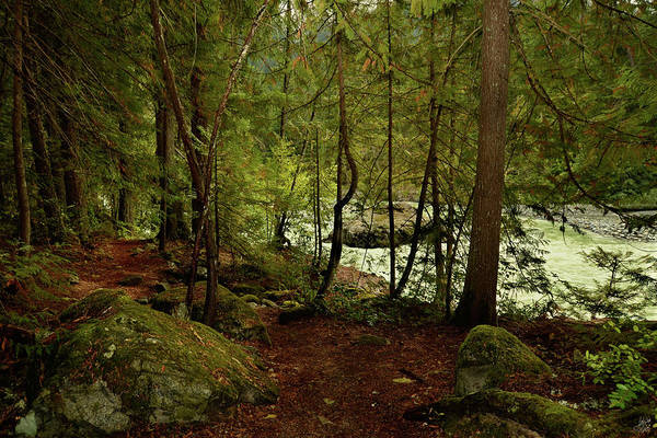 Pemberton Photograph - Green River, British Columbia by Lisa Knechtel