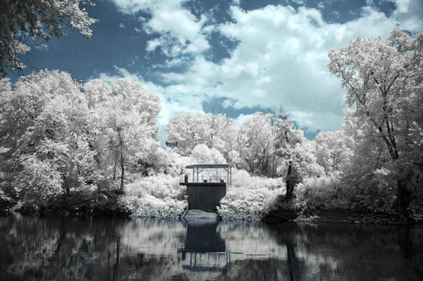 Wall Art - Photograph - Green River Ir by Amber Flowers