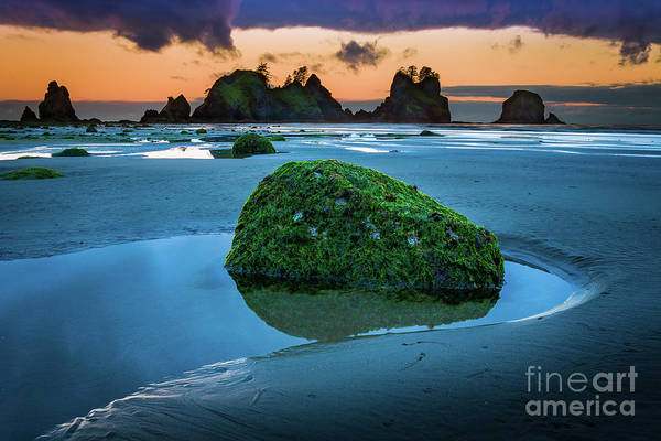 Olympic Peninsula Photograph - Green Rock by Inge Johnsson