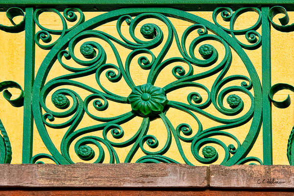 Photograph - Green Spirals by Christopher Holmes
