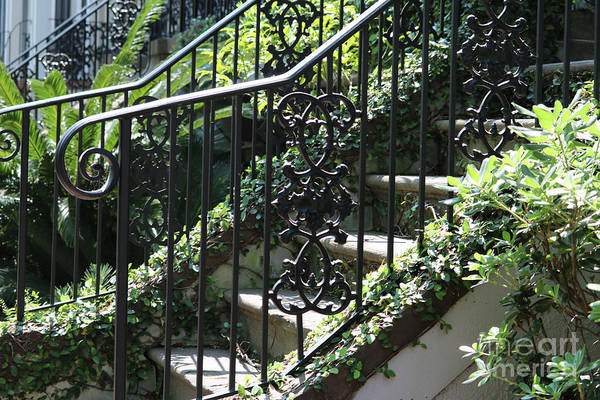 Photograph - Green Steps And Railings by Carol Groenen