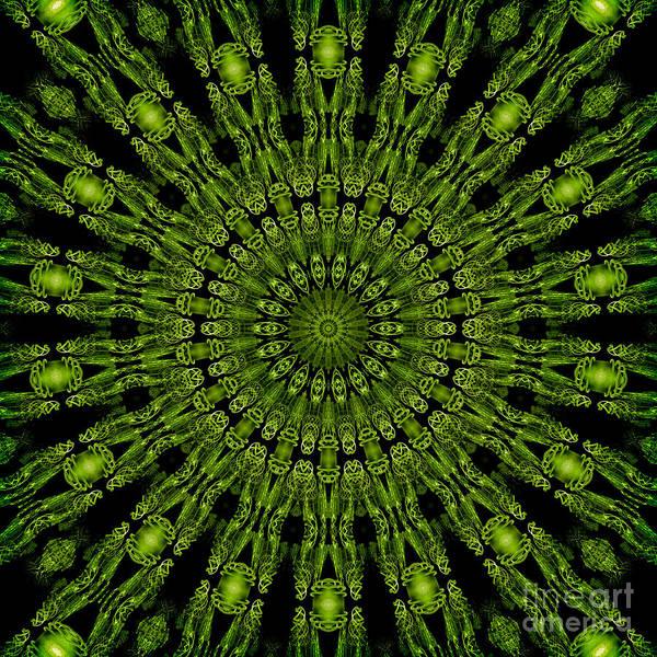 Digital Art - Green Tassels by Elaine Teague