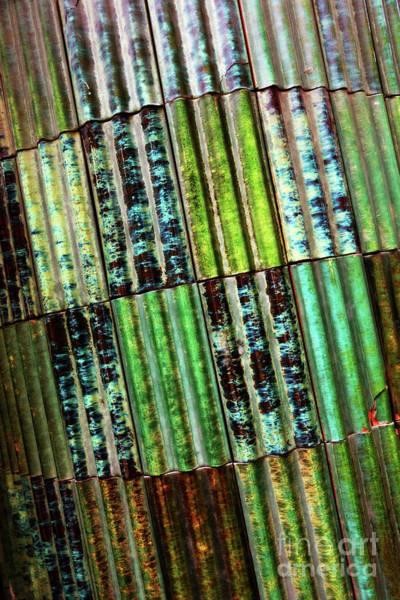 Photograph - Green Tiles Abstract by Carol Groenen