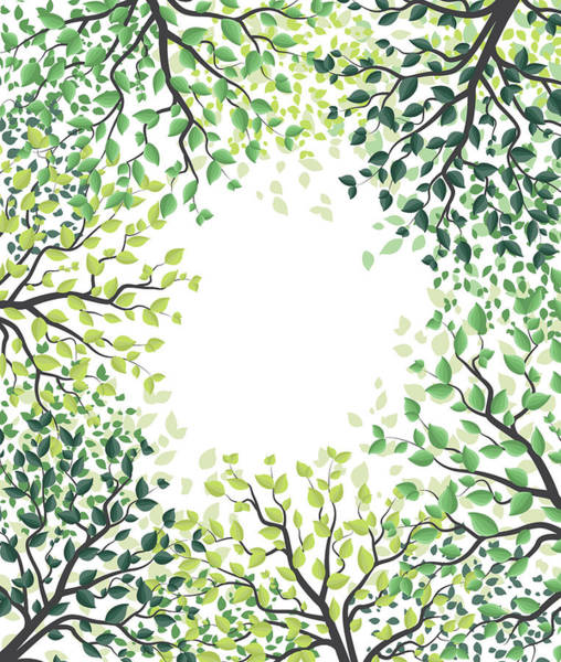 Organic Garden Drawing - Green Trees With Leaves by Miroslava Hlavacova
