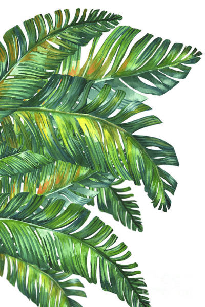 Life Wall Art - Digital Art - Green Tropic  by Mark Ashkenazi