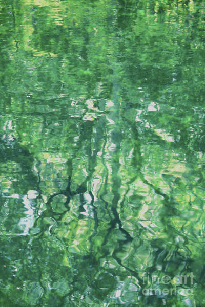 Photograph - Green Water Abstract by Carol Groenen