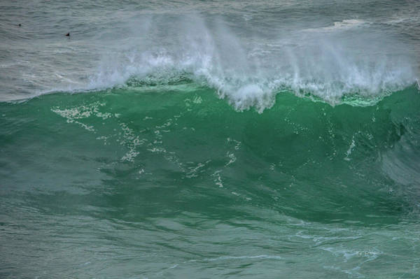 Photograph - Green Wave  by Bill Posner